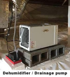 Dehumidifier with drainage pump