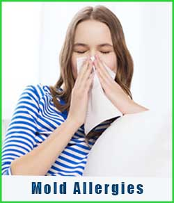 Allergy to mold spores & toxins